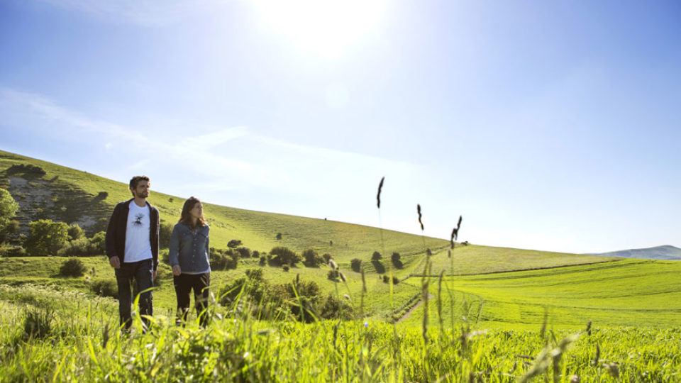 SouthDowns_featured