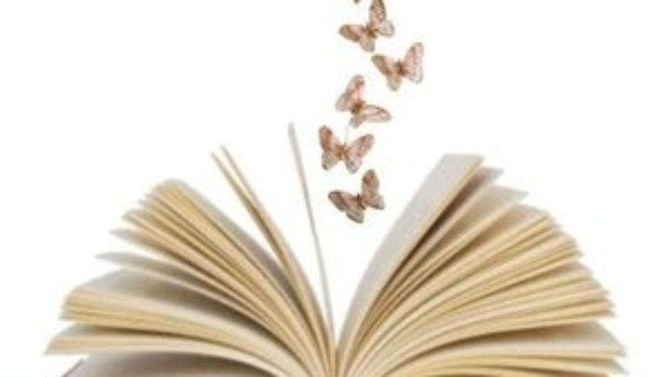 butterfly book 2