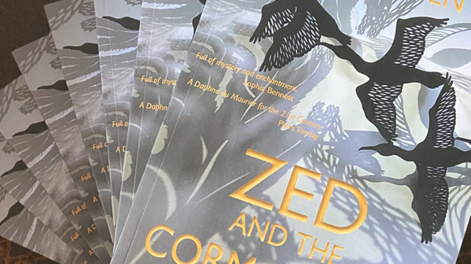 Zed and the comorants